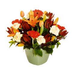 mevsim çiçeklerinden karma aranjman  Afyon çiçek yolla , çiçek gönder , çiçekçi