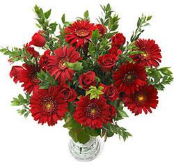 5 adet kirmizi gül 5 adet gerbera aranjmani  Afyon hediye çiçek yolla
