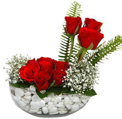 cam içerisinde 9 adet kirmizi gül  Afyon çiçek siparişi vermek
