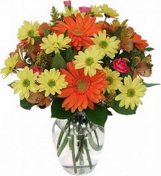 Afyon hediye sevgilime hediye çiçek  vazo içerisinde karışık mevsim çiçekleri