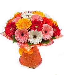 Renkli gerbera buketi  Afyon anneler günü çiçek yolla