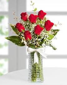 Cam vazoda 7 adet kırmızı gül  Afyon çiçek , çiçekçi , çiçekçilik