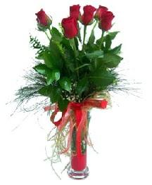 vazo içerisinde 5 kırmızı gül  Afyon güvenli kaliteli hızlı çiçek