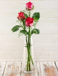 Cam içerisinde 3 kırmızı gül  Afyon çiçek satışı