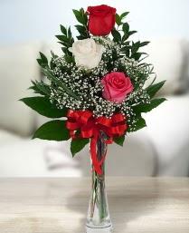 Camda 2 kırmızı 1 beyaz gül  Afyon ucuz çiçek gönder