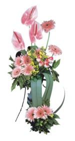 Afyon güvenli kaliteli hızlı çiçek  Pembe Antoryum Harikalar Rüyasi