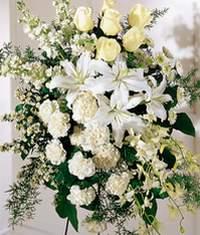 Afyon online çiçek gönderme sipariş  Kazablanka gül ve karanfil ferforje