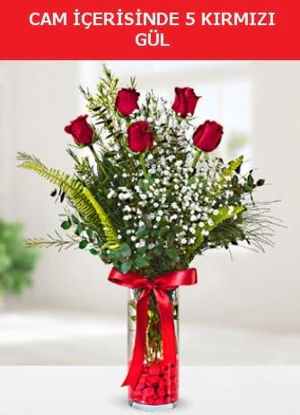 Cam içerisinde 5 adet kırmızı gül  Afyon çiçek siparişi sitesi