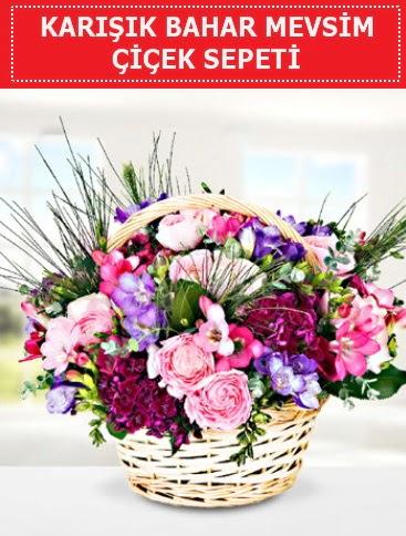 Karışık mevsim bahar çiçekleri  Afyon ucuz çiçek gönder
