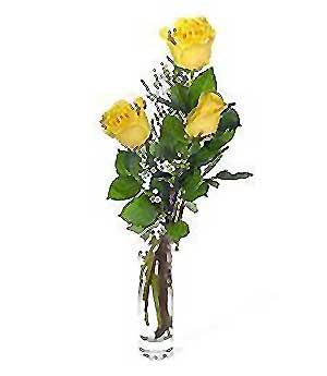 Afyon internetten çiçek siparişi  3 adet kalite cam yada mika vazo gül