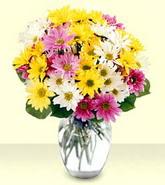 Afyon internetten çiçek siparişi  mevsim çiçekleri mika yada cam vazo