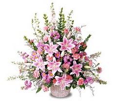 Afyon çiçek siparişi sitesi  Tanzim mevsim çiçeklerinden çiçek modeli