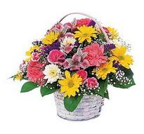 Afyon çiçek , çiçekçi , çiçekçilik  mevsim çiçekleri sepeti özel