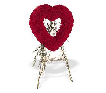Afyon internetten çiçek satışı  karanfillerden kalp pano