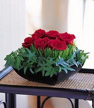 Afyon çiçek siparişi sitesi  10 adet kare mika yada cam vazoda gül tanzim