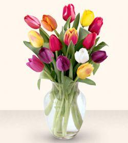 Afyon çiçekçiler  13 adet cam yada mika vazoda laleler