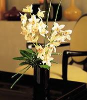 Afyon çiçekçiler  cam yada mika vazo içerisinde dal orkide