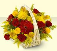 Afyon 14 şubat sevgililer günü çiçek  sepette mevsim çiçekleri
