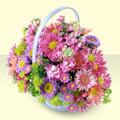 Afyon yurtiçi ve yurtdışı çiçek siparişi  bir sepet dolusu kir çiçegi  Afyon çiçek gönderme sitemiz güvenlidir