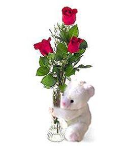 oyuncak ve 3 adet gül  Afyon çiçek siparişi sitesi