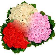 3 renkte gül seven sever   Afyon çiçek , çiçekçi , çiçekçilik