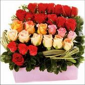 15 adet renkli gül ve cam   Afyon çiçekçi mağazası