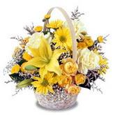 sadece sari çiçek sepeti   Afyon çiçek gönderme sitemiz güvenlidir