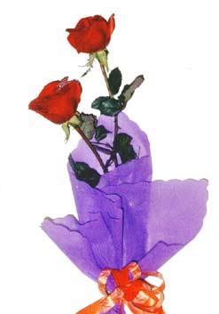 2  adet kirmizi gül buketi   Afyon çiçek , çiçekçi , çiçekçilik