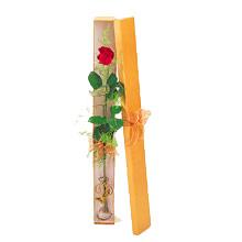 ince  kutuda  1  gül   Afyon çiçek yolla