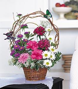 Afyon cicekciler , cicek siparisi  sepet içerisinde karanfil gerbera ve kir çiçekleri