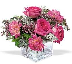 Afyon cicekciler , cicek siparisi  cam içerisinde 5 gül 7 gerbera çiçegi