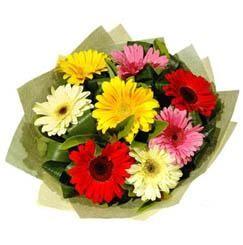 9 adet karisik gerbera demeti  Afyon çiçek mağazası , çiçekçi adresleri