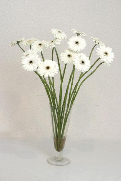 Afyon çiçek mağazası , çiçekçi adresleri  cam vazo içerisinde 17 adet sade gerbera