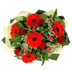 Afyon ucuz çiçek gönder   5 adet kirmizi gül 5 adet gerbera demeti