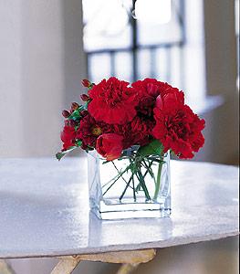 Afyon ucuz çiçek gönder  kirmizinin sihri cam içinde görsel sade çiçekler