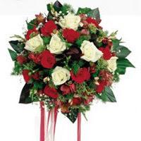 Afyon ucuz çiçek gönder  6 adet kirmizi 6 adet beyaz ve kir çiçekleri buket