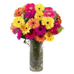 KARISIK GERBERALARDAN CAM VAZO TANZIMI  Afyon güvenli kaliteli hızlı çiçek