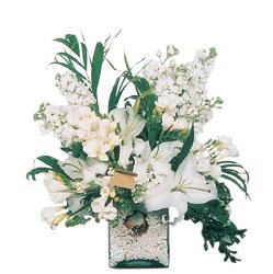 Afyon internetten çiçek siparişi  sadece beyazlardan olusmus mevsim cam yada mika tanzim