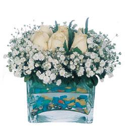 Afyon çiçekçi mağazası  mika yada cam içerisinde 7 adet beyaz gül