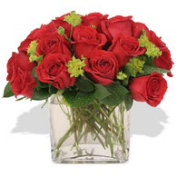Afyon çiçekçi telefonları  10 adet kirmizi gül ve cam yada mika vazo