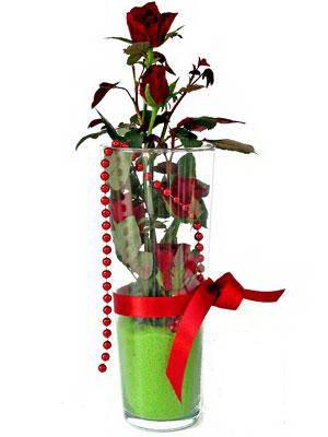 Afyon online çiçek gönderme sipariş  Cam yada mika içerisinde 9 adet kirmizi gül - sevdiklerinize özel