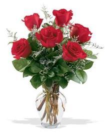 Afyon çiçek gönderme sitemiz güvenlidir  7 adet kirmizi gül cam yada mika vazoda sevenlere