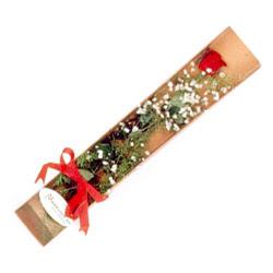 Afyon çiçek , çiçekçi , çiçekçilik  Kutuda tek 1 adet kirmizi gül çiçegi