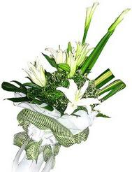 Afyon güvenli kaliteli hızlı çiçek  3 dal kazablanka çiçegi ve yesillikler