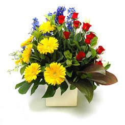 Afyon online çiçek gönderme sipariş  9 adet gül ve kir çiçekleri cam yada mika vazoda