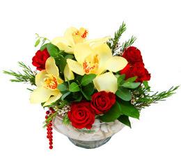 Afyon çiçek gönderme  1 kandil kazablanka ve 5 adet kirmizi gül