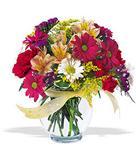 Afyon çiçek , çiçekçi , çiçekçilik  cam yada mika vazo içerisinde karisik kir çiçekleri