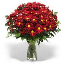 Afyon çiçek yolla  Kir çiçekleri cam yada mika vazo içinde