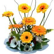 camda gerbera ve mis kokulu kir çiçekleri  Afyon çiçekçi telefonları