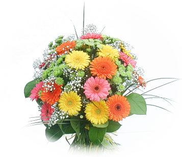 13 adet gerbera çiçegi buketi  Afyon online çiçek gönderme sipariş